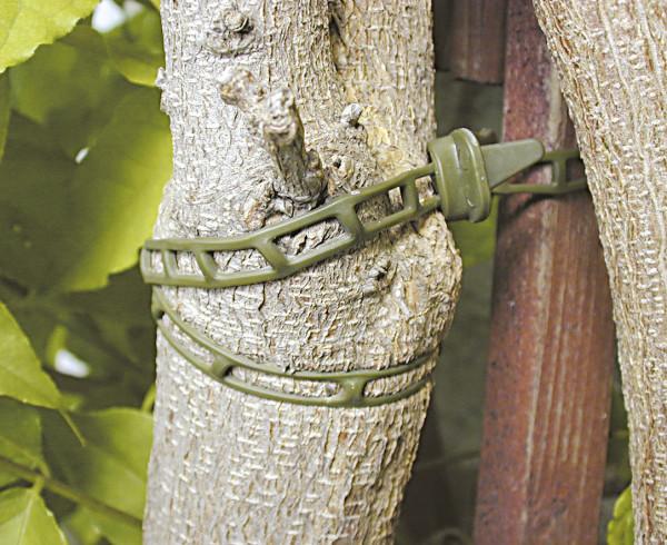 Connettore albero morbido