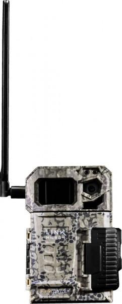 Videocamera forestale